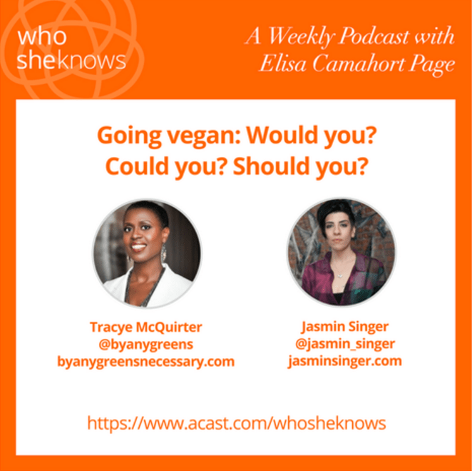 SheKnows Podcast with Jasmin Singer